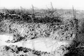Barbed_wire_at_Beaumont_Hamel